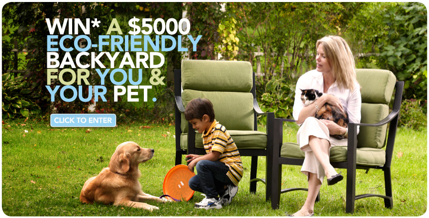 Dog Friendly Backyard Makeover : Backyard Makeover  CoolCanucks  Canadian Coupons, Contests, Deals